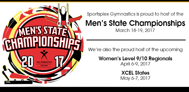 2017 Men's State Championships graphic